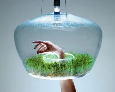 glass-greenhouse-lamp-1