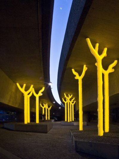 Glowing trees