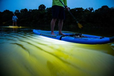 Leds On Paddle Boards Outdoor Lighting Id Lights