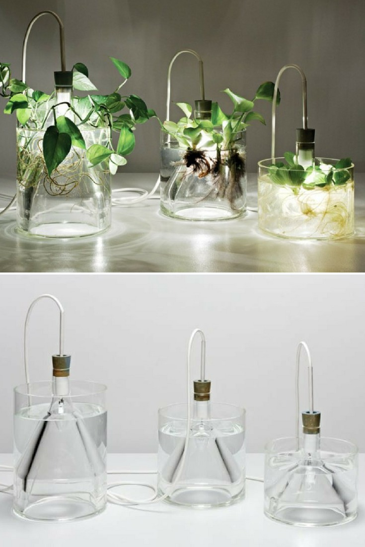 Mixing electricity and water isn\'t a practice that we\'d normally advise, but in the case of a series of light fixtures designed by Miriam Aust, the two are paired to stunning mad-scientist effect. In Aust\'s pendant light turned vase, she fits a light bulb into an airtight beaker surrounded by a hand-blown glass cylinder. #concept #glasslamp #kitchendecor #lamp #lightbulb #lightfixture #lighting #lightingdesign #modernlighting #pendantlamp #recycle #tablelamp