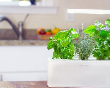 Smart-Herb-Garden_Kitchen