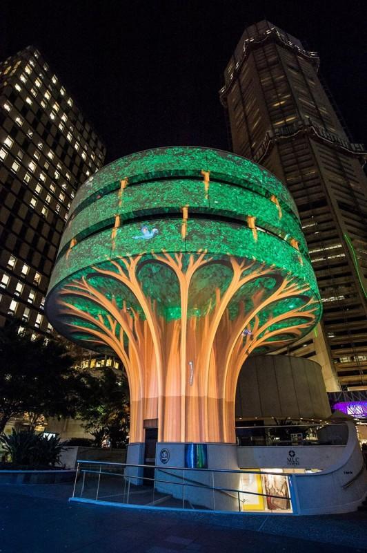 Sydney lights2