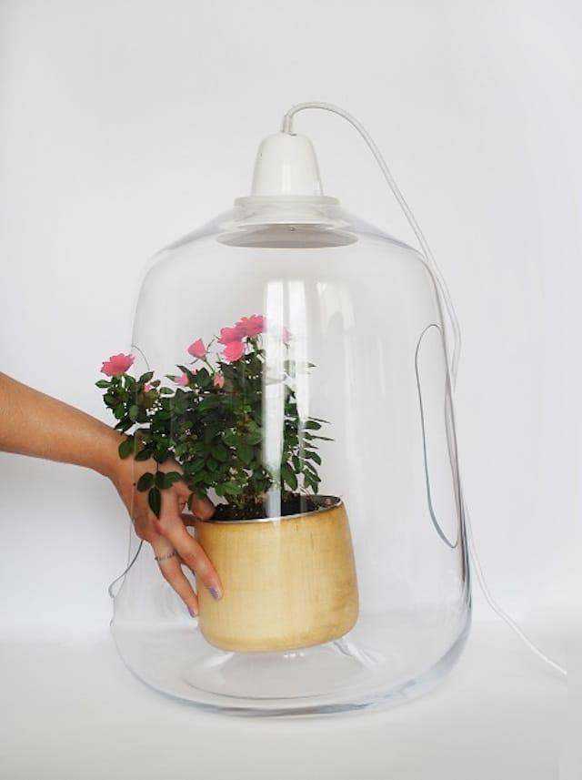 Vegetal Milo Plant Lamp