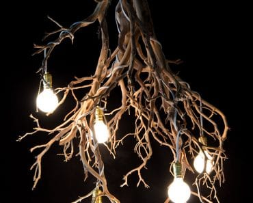 Wood Tree Branch Sculptural Lighting