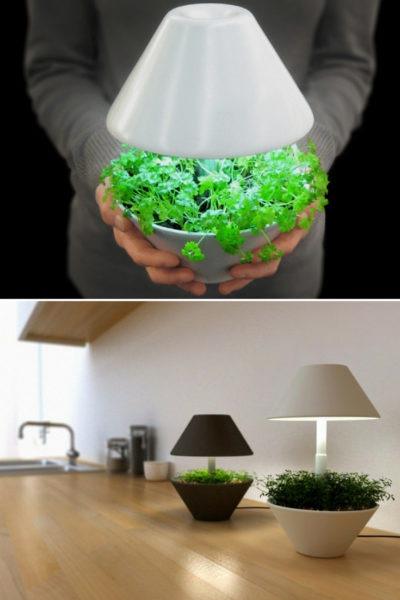 Lightpot: Lighting and Plants Symbiosis Table Lamp
