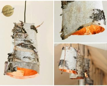 DIY Birch Bark Lamps