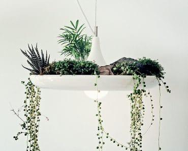 Babylon Vegetal Lamp