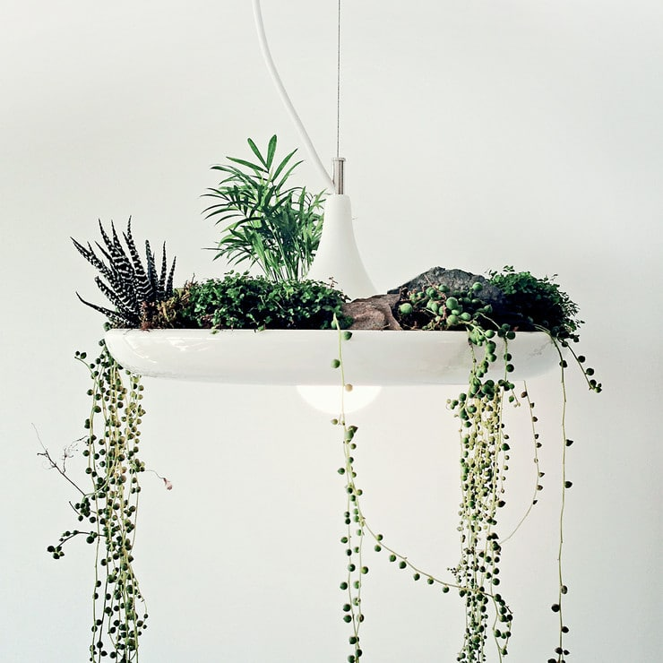 Babylon Vegetal Lamp