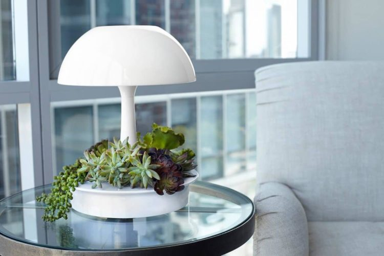 Ambienta Vegetal Table Lamp Table Lamps