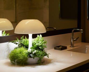 Ambienta Vegetal Lamp
