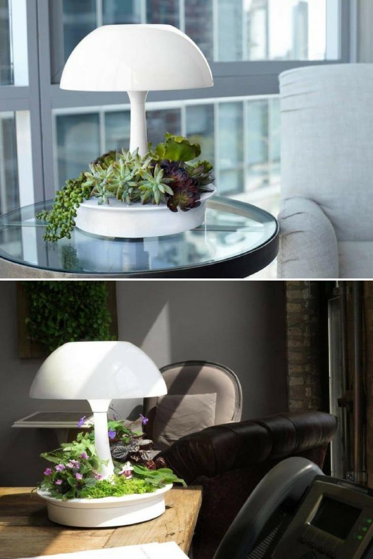 Ambienta Vegetal Table Lamp - table-lamps