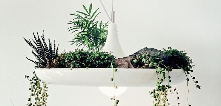 Babylon-Vegetal-Lamp