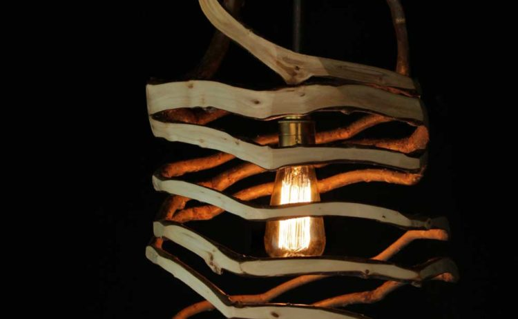 The Man Who Grows Natural Pendant Lighting - wood-lamps, pendant-lighting