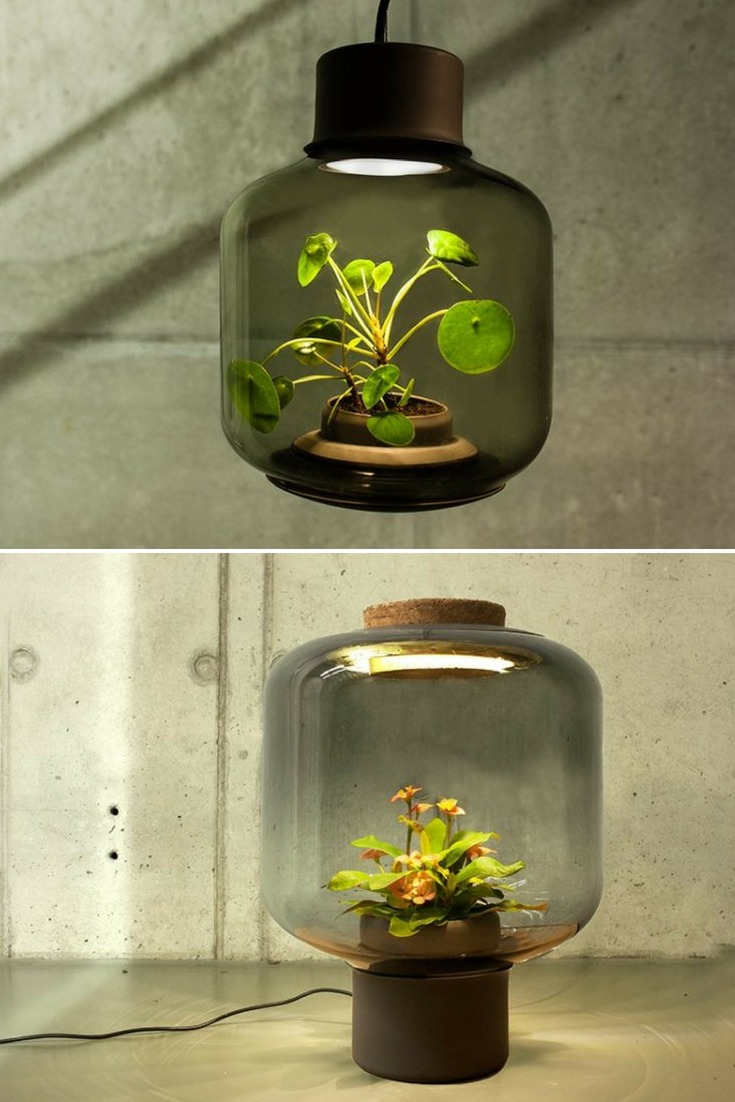 How To Grow Plants In Windowless Spaces With Pendant