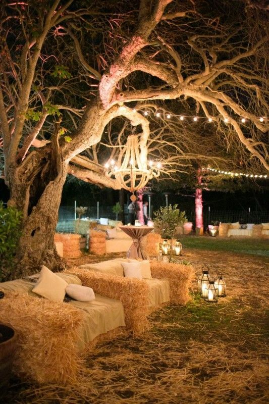 1 Wood Chandelier On Tree Branch Lighting Ideas