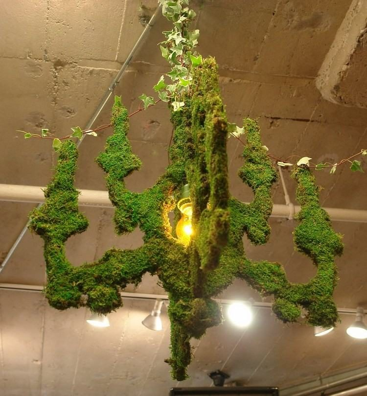 Artistic Chandelier Dressed in Vegetable Moss