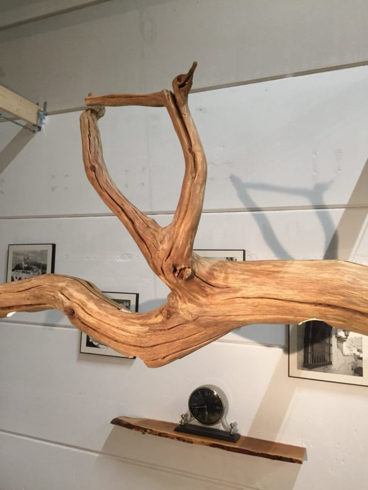 Old Oak Tree LED Ceiling Lamp