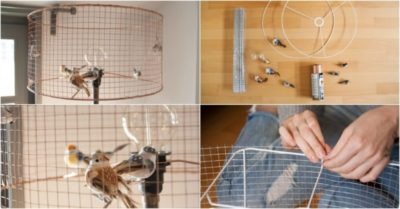DIY Bird Cage Lamp