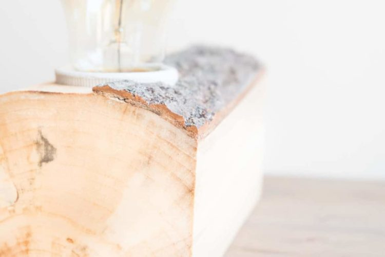 Small Wood Lamp with Tree Bark - wood-lamps, table-lamps