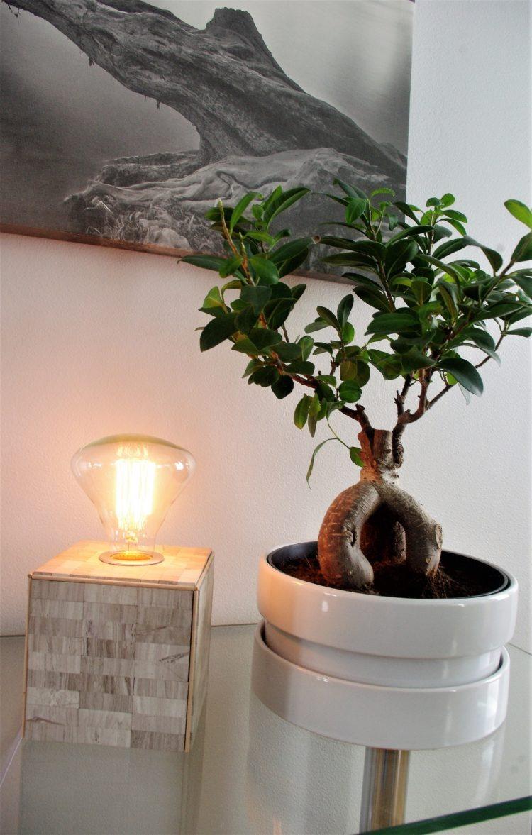 Beautiful Bedside Wooden Lamp - desk-lamps